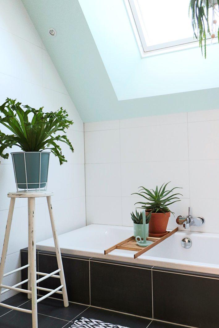 badkamer styling met planten