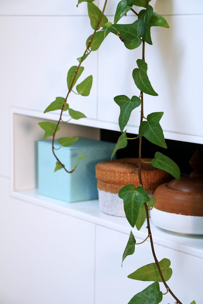 bathroom styling with plants