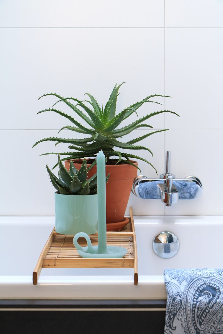 bathroom styling plants