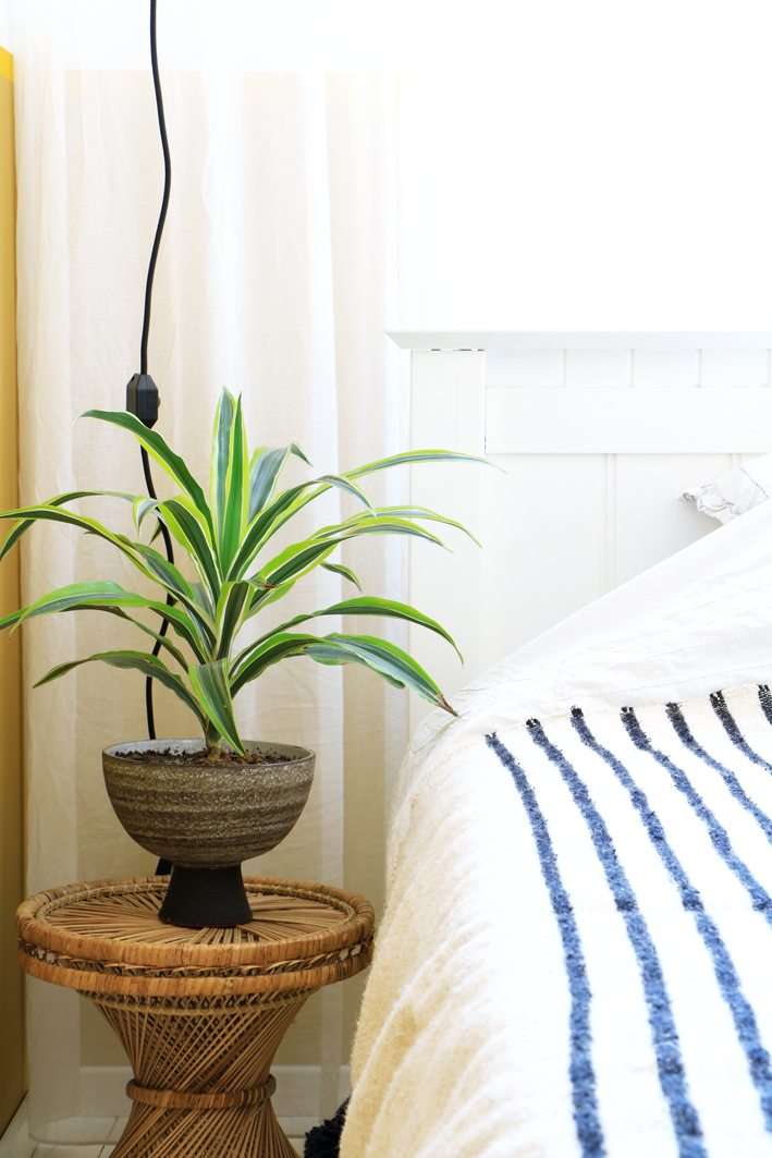 retro plant bedroom