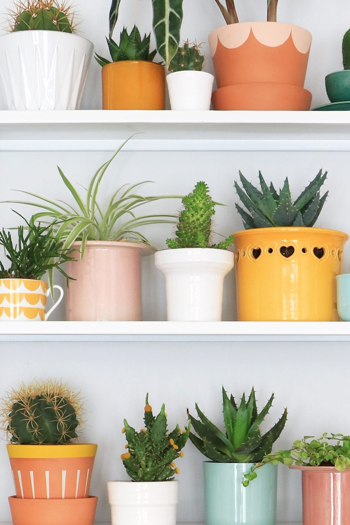 styling with plants