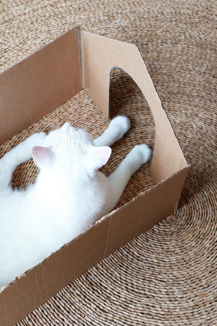 ikea hack for international cat day enter my attic. Black Bedroom Furniture Sets. Home Design Ideas