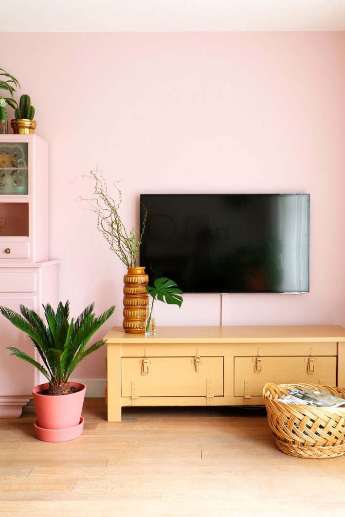 livingroom with pink wall