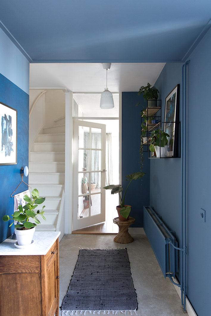 hal met blauwe muur