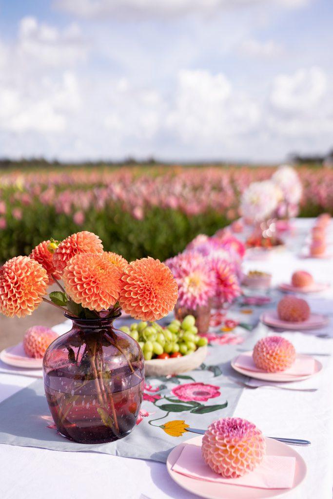 dahlia's fam flowerfarm