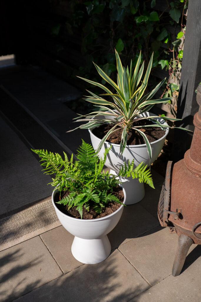 tuininspiratie planten